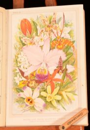 1895 The Amateur Orchid Cultivators' Guide Book H A Burberry Illustrated