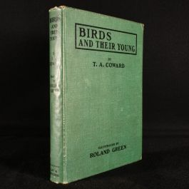 1923 Birds and their Young
