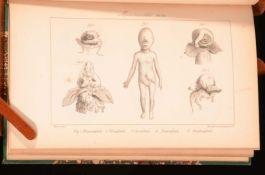 1837 Histoire Generale Particuliere Des Anomalies Atlas Geoffroy Saint-Hilaire