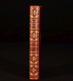 1909 Wild NATURE'S Ways R. Kearton Illustrated Bickers Binding
