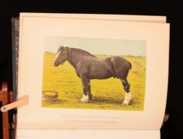 c1868 Modern Practical Farriery By W J Miles With Colour Illustrations Engraving
