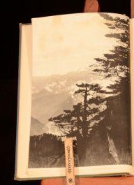 1935 The Romance of Gardening F Kingdon Ward Illustrated Photographs First