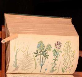 1849 4 Vols Rural Cycolpedia Illustrated John M Wilson Instruments Practice
