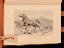 1897 Wild Traits in Tame Animals by Louis Robinson Illustrated First Edition