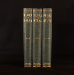 1903-05 3vol Flora and Sylva Monthly Review W. Robinson Illus Colour Plates 1st