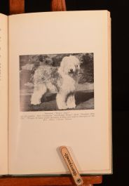 1937 The Old English Sheep Dog Henry Arthur Tilley Second Edition Illustrated