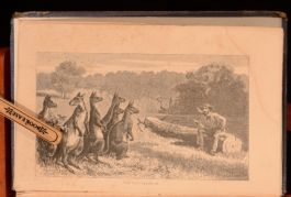1862 Kangaroo Land Rev Arthur Polehampton Scarce Australia Travel Illus First