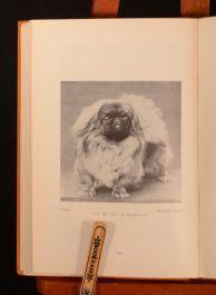 1929 The New Popular Pekingese John Vlasto Charles Allport Mrs Christian Hager