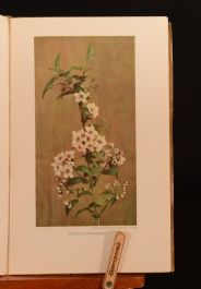1932 2vol The New Flora and Silva January April Illustrated Colour