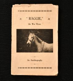 1931 Raggie The Warhorse an Autobiography