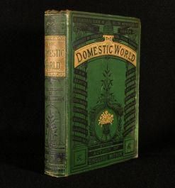 1878 The Domestic World