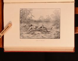 1922 The Story of Lion Hunt Arnold Wienholt Walter Seed First Edition Illus