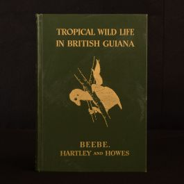 1917 Tropical Wild Life William Beebe Theodore Roosevelt Illustrated 1st Edition