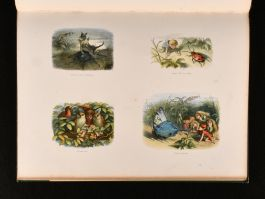 1875 In Fairyland A Series of Pictures from the Elf-World