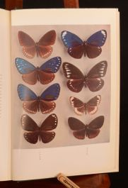 1956 Butterflies of The Malay Peninsula A S Corbet H M Pendlebury Dustwrapper