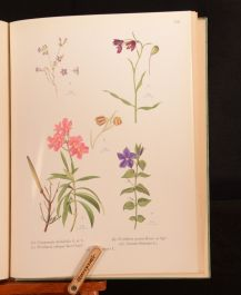 1938 Wild Flowers of Attica S Clifford Atchley WO Everett W B Turrill 1st Ed