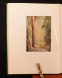 1930 An Anthography of the Eucalypts Russell Grimwade Illustrated Colour Plates
