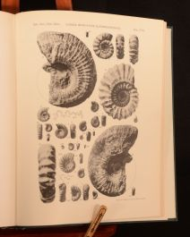 1938 Catalogue of The Ammonites of the Liassic Family Liparoceratidae L F Spath