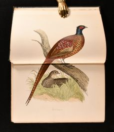 1895 British Game Birds and Wildfowl