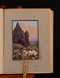 1924 Alpine Flowers and Rock Gardens Wright Graveson Colour Illustrated