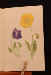 1872 1vol in 17 parts Alpine Plants David Wooster First Edition Colour Illustrations