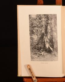 1922 The Edge of the Jungle William Beebe First Edition First Impression Illustrated