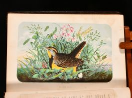 1854 Wild Scenes and Song-Birds