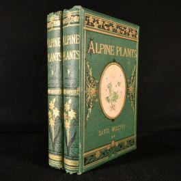 1874 Alpine Plants; Figures and Descriptions of the Alpine Flowers